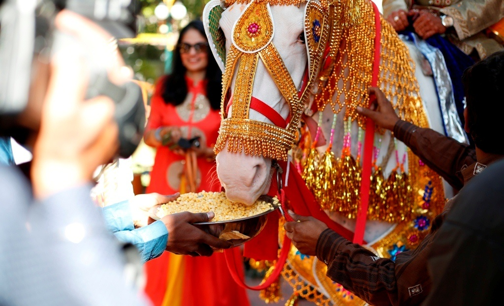 Top Professional Photographers In Udaipur (1)